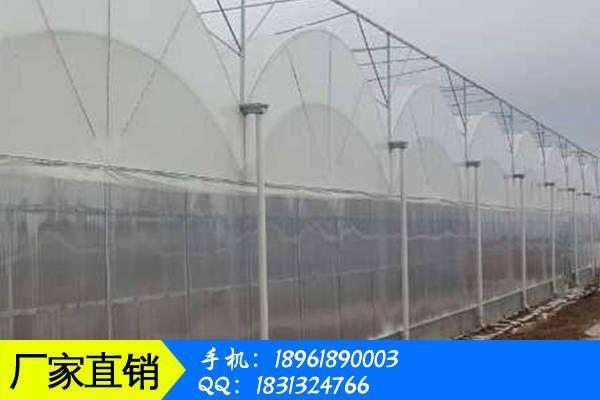 齐齐哈尔建华区薄膜连栋温室大棚安装