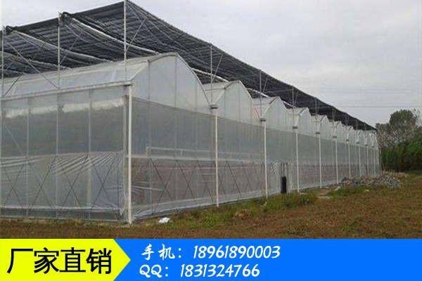 周口淮阳县温室大棚连栋扶植价钱跌势正在扩展