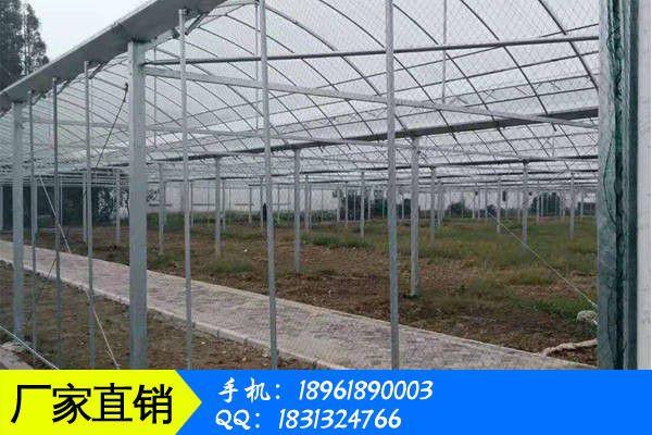 台湾温室大棚基地价格涨跌两真的好纠结