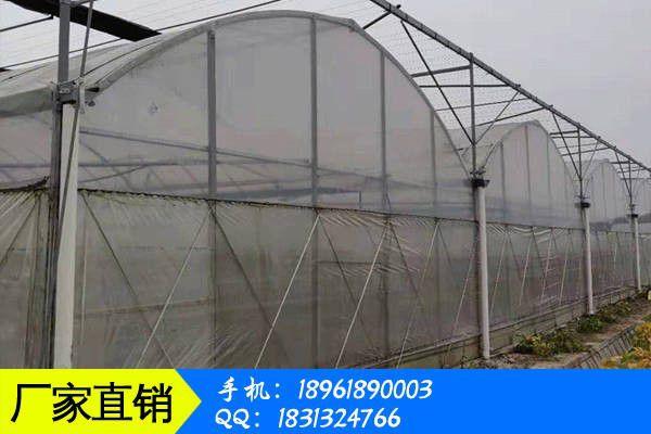 乌兰察布凉城县连栋温室大棚建成为留校他安