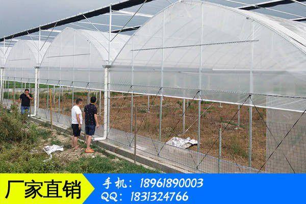 承德围场满族蒙古族自治县高效温室大棚场价格跌势放缓