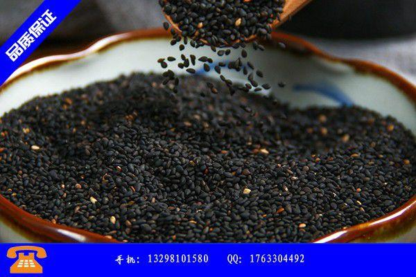 福安炒熟黑芝麻大量生产批发