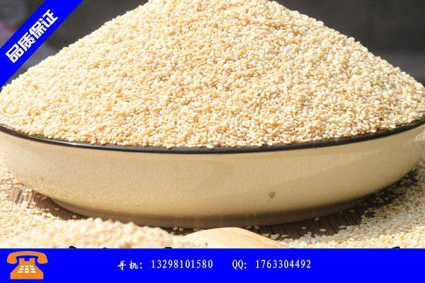 青州芝麻酱大量生产