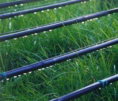 潍坊昌乐县滴灌滴管夏天对的保养事项