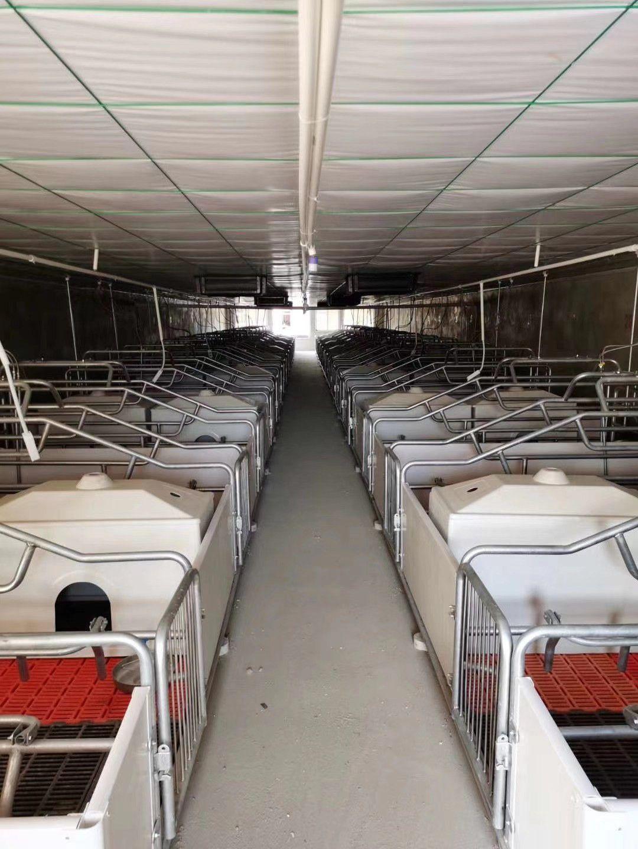 运城框架笼具设备现货齐全价格优惠