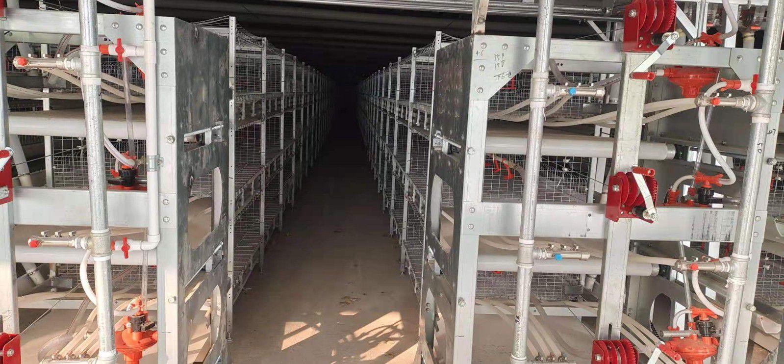 哈尔滨市养鸡料线生产现货交易关键点有什么