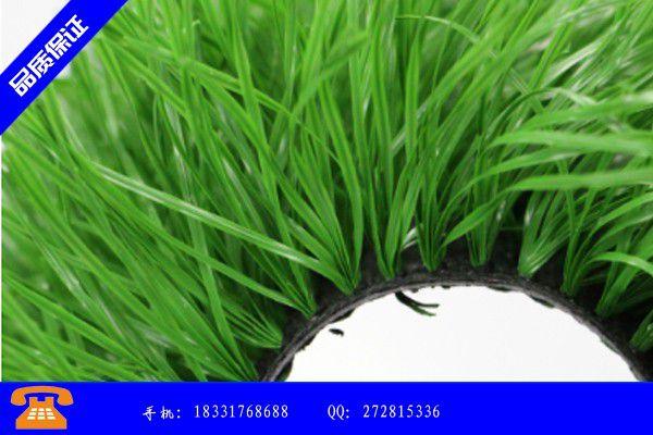 大安市颗粒橡胶地板要重视品牌知名度的塑造|大安市颗粒橡胶的价格