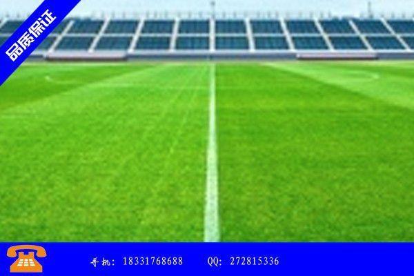 宁波市人造草坪的价格短期内走势将趋于平稳