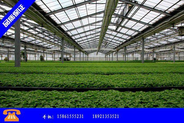 石家庄市蔬菜大棚造价多少直销价 石家庄市育苗大棚建设