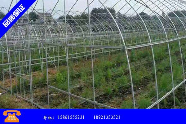 河北省怎样建造蔬菜大棚需要多少钱
