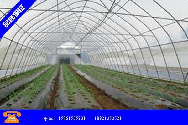 安国市冬天蔬菜大棚直接材料