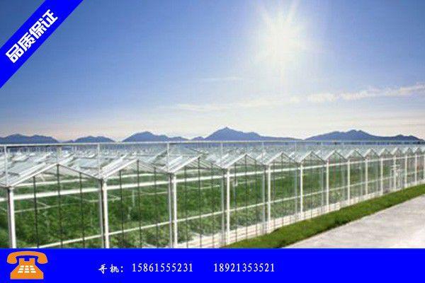 义马市大棚种植成本市场火热 义马市大棚种植技术大全