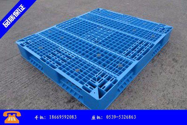 保定高阳县塑料网格垫板价格优惠