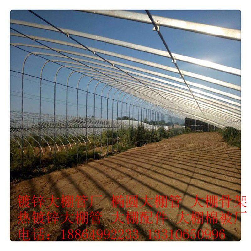 黃南藏族河南蒙古族自治縣溫室和大棚的區別