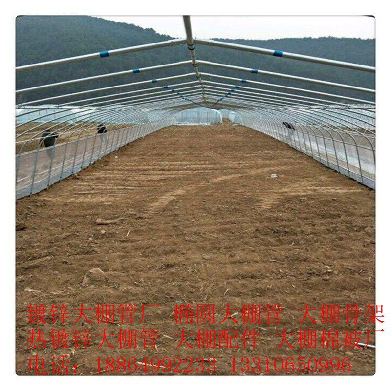 西寧湟中縣新型大棚骨架多少錢產品性能發揮